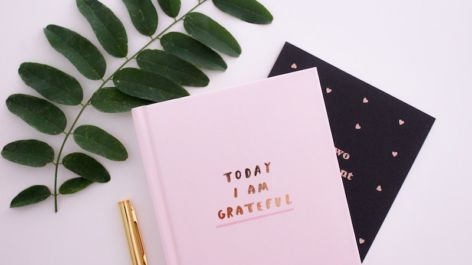In the Know, Vol. 2: Developing Gratitude